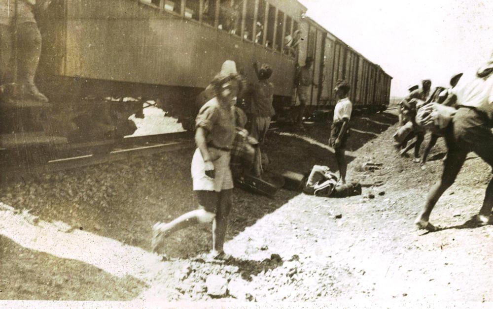 פארק הרכבת החיג'אזית בקרית טבעון - פרויקט חדש (6/6)